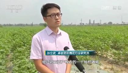 央视《财经周刊》采访卓创资讯分析师孙立武