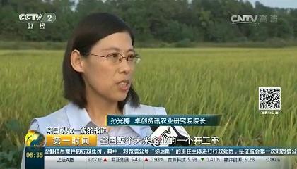 央视《第一时间》采访卓创资讯分析师孙光梅
