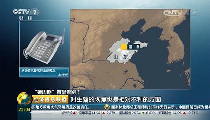 央视《经济信息联播》电话连线卓创资讯分析师王程程