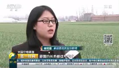 央视《第一时间》采访卓创资讯农业分析师崔晓娜