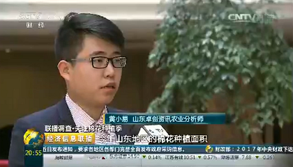 央视《经济信息联播》采访卓创资讯分析师黄小易