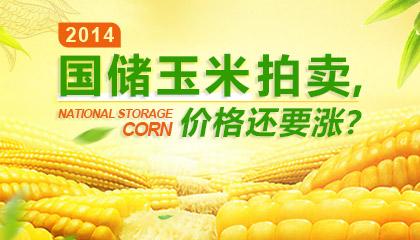 2014国储玉米拍卖,价格还要涨?