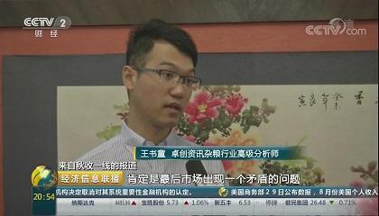 央视《经济信息联播》采访卓创资讯分析师王书童