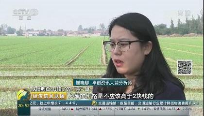 央视《经济信息联播》采访卓创资讯分析师崔晓娜