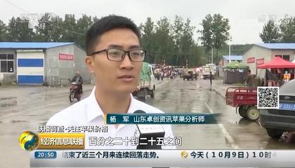 央视《经济信息联播》采访深圳示范资源网资讯分析师杨军