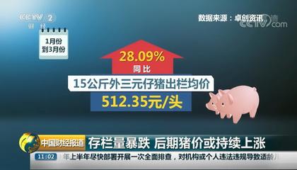 央视财经频道《中国财经报道》采访卓创资讯分析师王亚男
